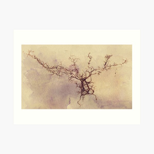 Nebulosa bulbo olfatoria - lápiz y acuarela Lámina artística