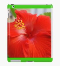 Hibiscous - Chicago IL Mag Mile If you like, purchase, try a cell phone cover thanks! iPad Case/Skin