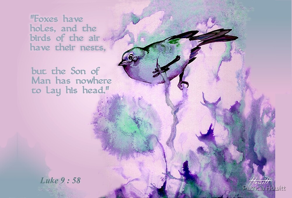 Birds of the Air by Patricia Howitt