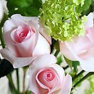 Roses and Viburnum by BC Family