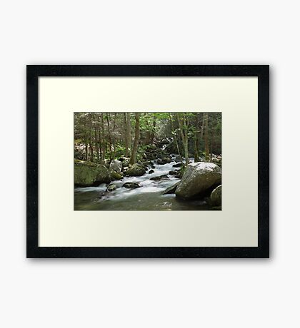 Cosby Creek Framed Print