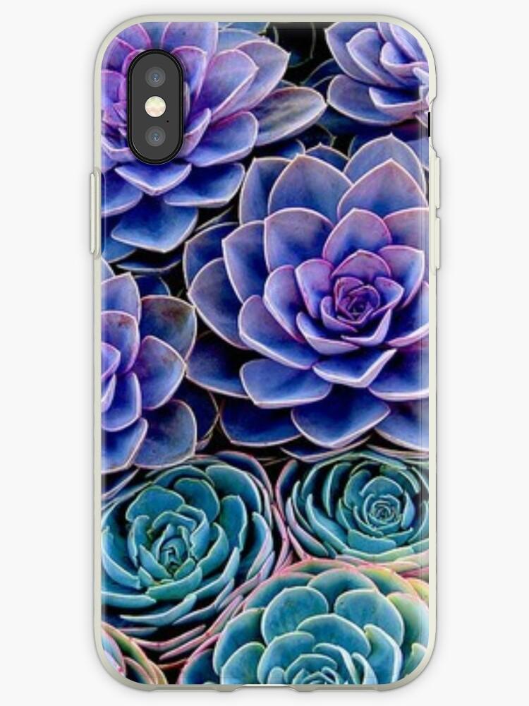 Purple Cacti by Ravanna Lotus