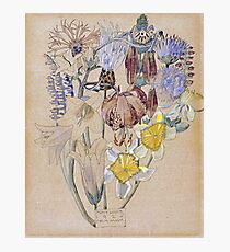 Vintage blue art - Charles Rennie Mackintosh  - Mont Louis - Flower Study Photographic Print