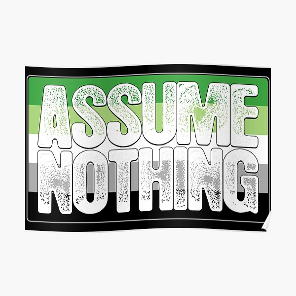 Assume Nothing Aromantic Pride Flag Poster