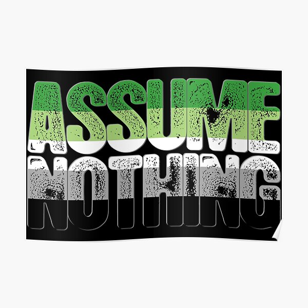 Assume Nothing Aromantic Pride Poster