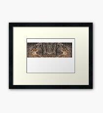 Mirror landscape Framed Print