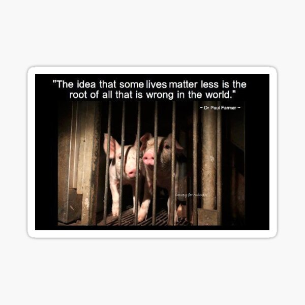 Speciesism - Pigs in a Cage Sticker