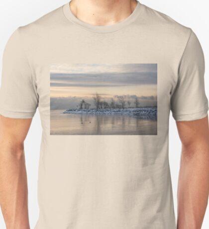 Two Swans, Sleeping - Serene Winter Lake Scene T-Shirt