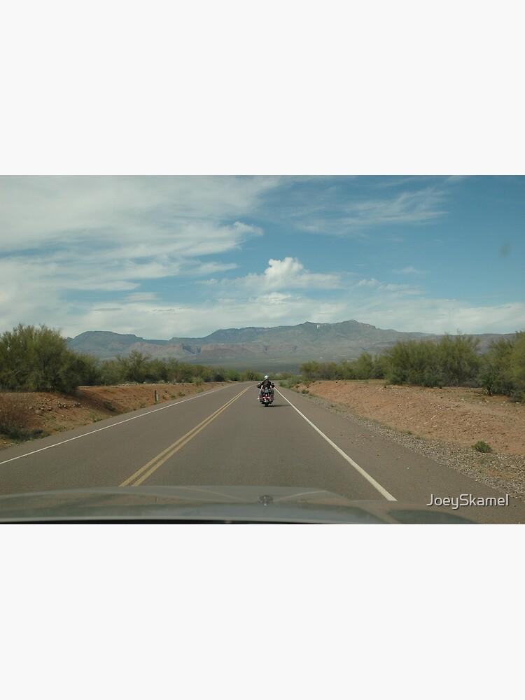 Arizona State Highway 88 by JoeySkamel