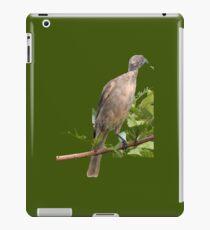 Bird Eating iPad Case/Skin