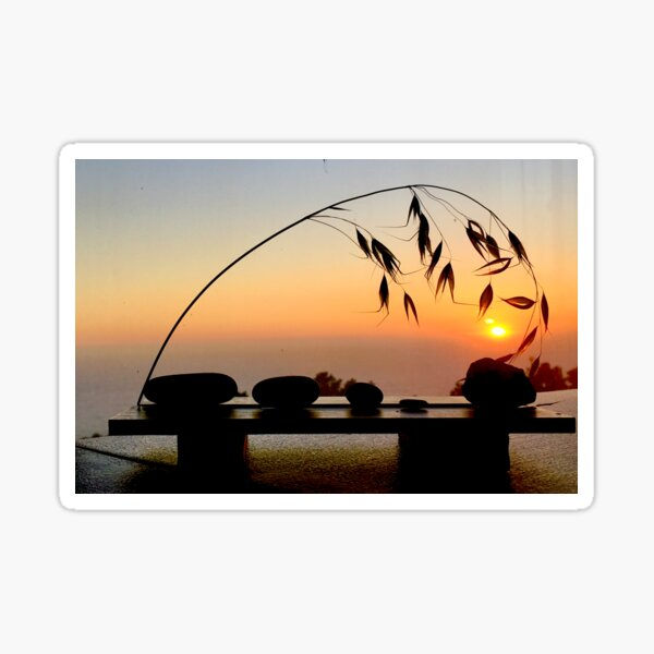 Grass and pebbles in sunset Sticker