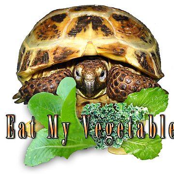 Tortoise - I Eat My Vegetables by LuckyTortoise