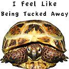 Tortoise - I feel like being tucked away by LuckyTortoise