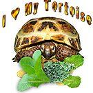 I love my tortoise by LuckyTortoise