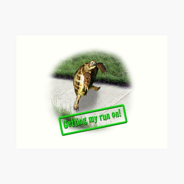 Tortoise - Getting my run on Art Print