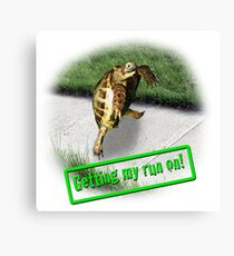 Tortoise - Getting my run on Canvas Print