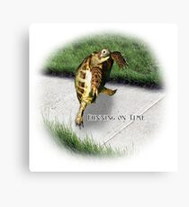 Tortoise - Running on time Canvas Print