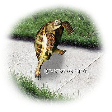 Tortoise - Running on time by LuckyTortoise