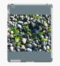Seaweed and Rocks, Lopez Island iPad Case/Skin