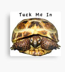 Tortoise - Tuck me in Metal Print