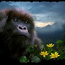 """Hope"" (Mountain Gorilla) by Skye Ryan-Evans"
