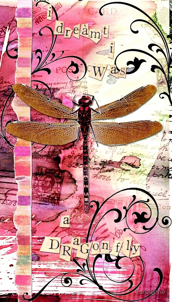 Dragonfly dream by Carolynne