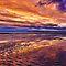 Fabulous Beach Sunsets