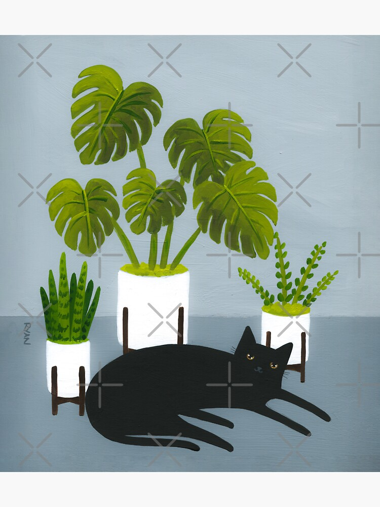 Black Cat and Potted Plants by kilkennycat