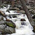 Bridalveil Creek, Below the Falls by Chris Gudger