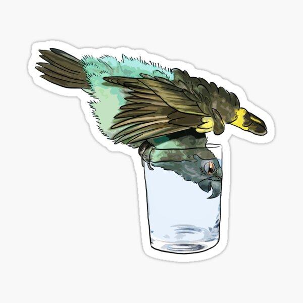 Drinking Meyer's Parrot Sticker