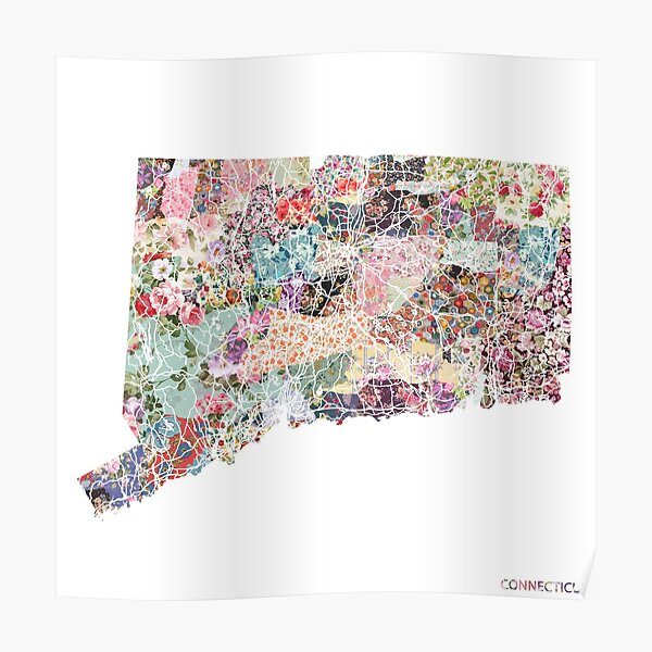Connecticut map Poster