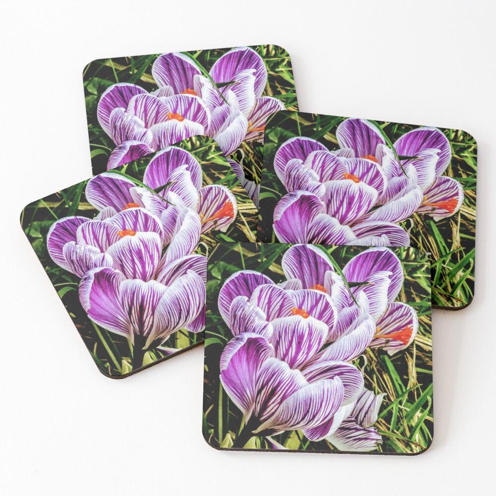 Flowers Coasters (Set of 4)