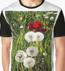 Dandelions with Red in Radolfzell - Lake Constance Graphic T-Shirt