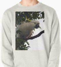 Sulphur Crested Cockatoo Pullover
