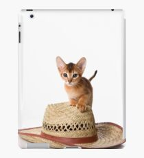 Lovely fluffy kitten Abyssinian cat iPad Case/Skin