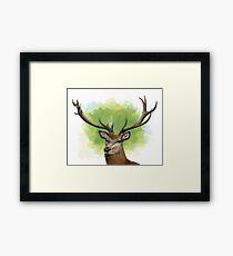 Red deer Framed Print