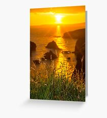 beautiful sunset over the coastal rocks Greeting Card