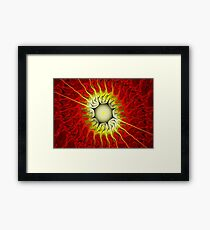 Fire Flower-Apophysis 7 Framed Print