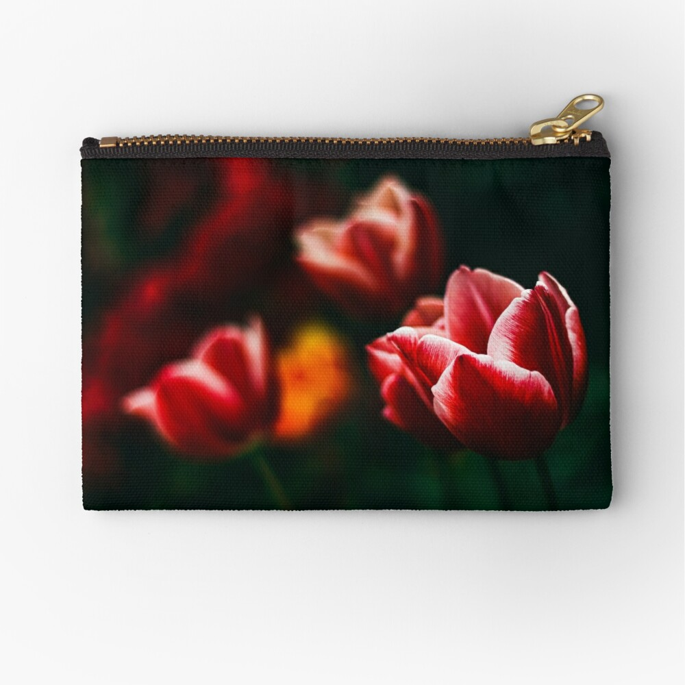 Red Atmosphere Zipper Pouch