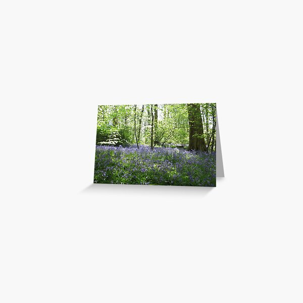 Bluebell Woods Heaton Park Greeting Card