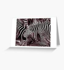 Knee Deep in Brown Zebras  Greeting Card