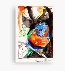 Lorikeet 2 Canvas Print
