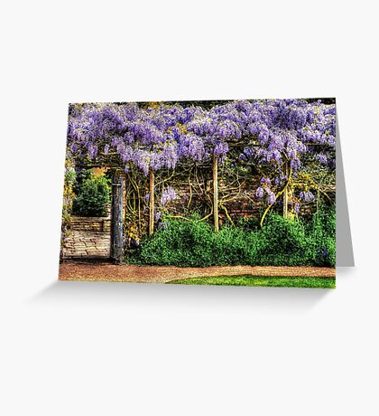 Wall of Wisteria HDR Greeting Card