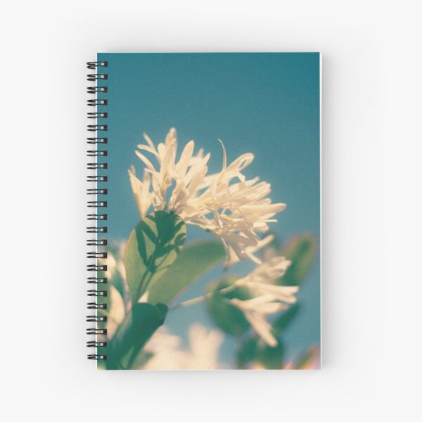 Soak in the Sun Spiral Notebook