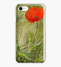 Red Poppy - Mohnblume 3 iPhone Case/Skin
