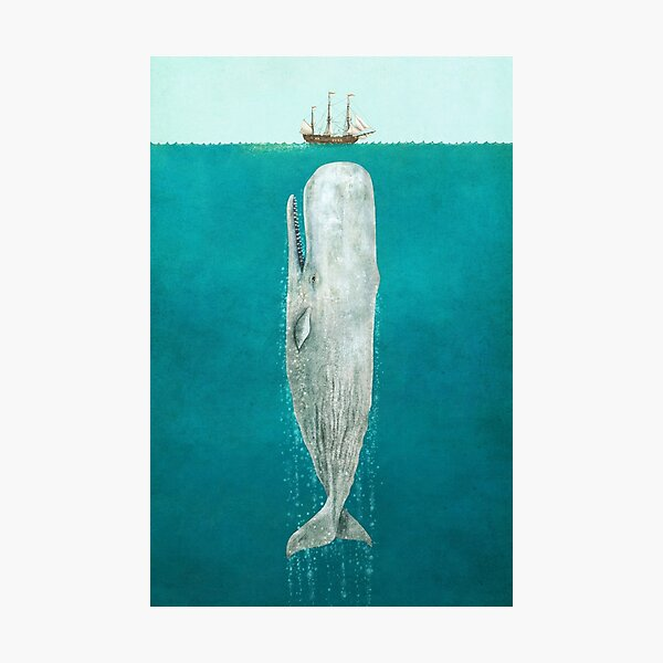 The Whale - Full Length  Photographic Print