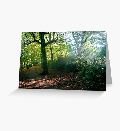 The glory of an autumn morning Greeting Card