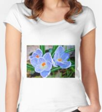 Pastel shades of blue Women's Fitted Scoop T-Shirt