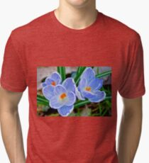Pastel shades of blue Tri-blend T-Shirt