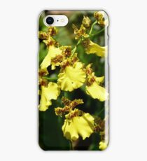 Oncidium sphacelatum iPhone Case/Skin